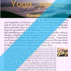 Dieses Zertifikat erhältst du nach erfolgreichem Ausbildungsabschluss