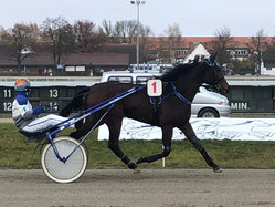 Better be Royal (Royal Dream - Daventry)  - J. Franzl