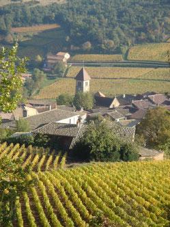 Le village de Solutré dans l'appellation Pouilly-Fuissé . Laurent Gotti
