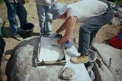Moulage de la gravure principale du site du Potevert à la Boissière de Montaigu