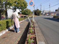 地域花壇への水やり活動
