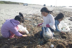 海岸清掃の様子