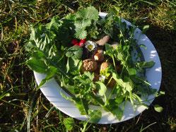 Teller mit allerlei Köstlichem frisch aus der Natur