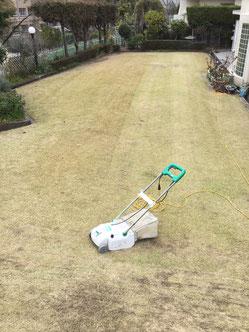 芝の手入れ 刈り込み しまだ耳鼻咽喉科医院
