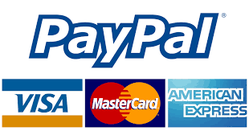 Paypal payment with cards
