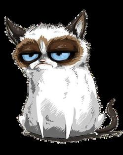 Тоскакот грустит о том, что в Линуксе тяжело обрабатывать котофото...