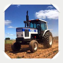 Ford 8401 Traktor