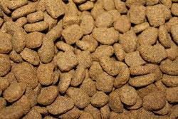 Le marché de l'alimentation des chiens et chats