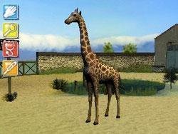 Meine Zoo-Tierarztpraxis 3D