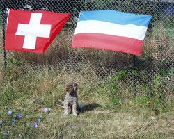 Romeo vertritt die luxemburgischen Farben