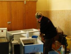 Unsere gebrauchte neu erworbene Küche sauber gemacht.