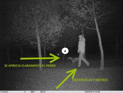 Se ven claramente tanto el perro como la persona, a la misma distancia. El arbol nº4 es iluminado y visible