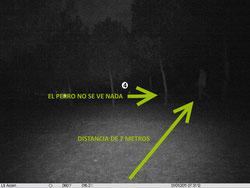 La capacidad nocturna de un gran angular es muy pobre.  A distancias superiores a 10-12 metros no se ve nada