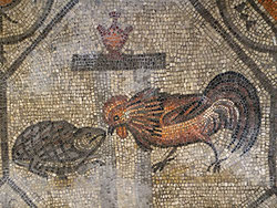 La lotta tra il gallo e la tartaruga - Basilica di Aquileia
