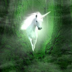 blog over het kleine witte paardje van elizabeth goudge