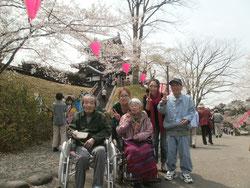 満開の桜とお城のコラボ。地元冥利に尽きます