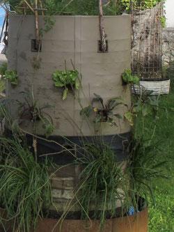 Vertikale Bepflanzungsobjekte