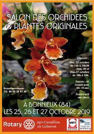 salon-des-orchidees-et-plantes-originales-bonnieux