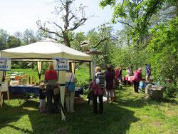 Tulpenfest 2014