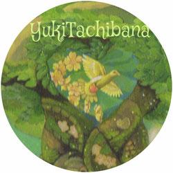 眠る男〜風花 ハト 立花雪 YukiTachibana