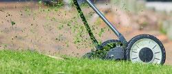 Bild: Rasenpflege