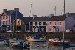 Harbourmaster - Blick vom Hafen