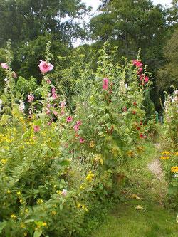 Jardin - gîte la Fontaine St Gervais
