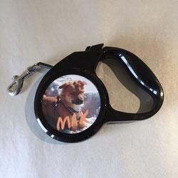 Hundehort Rudel-Treff - Hundeleine