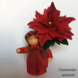 Blumenkinderwerkstatt Weihnachtsstern