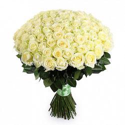 Розы в Подольске