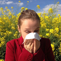 Pollenallergie Tipps Cuypers Apotheken