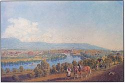 Nr. 1981-13  Solothurn