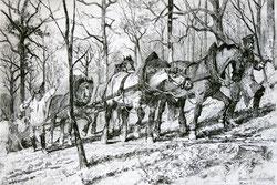 Nr.783 Holzfäller mit Pferden