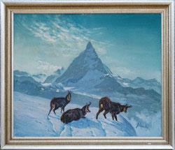 Nr. 3577 Matterhorn Westseite mit Gämsen