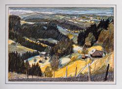 Nr.2757 Emmentaler Landschaft
