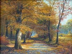 Nr. 3241 Herbstlicher Waldweg