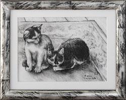 Nr.3239 Zwei Katzen