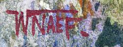 NAEF - BOUVIN  WALTER