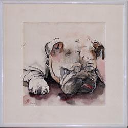 Nr. 2553 Bulldog