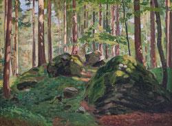 Nr. 3346 Im Bergwald