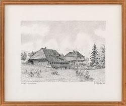 Nr. 3540 Grimmenstein, Eriswil 1982