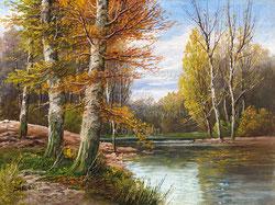 Nr. 193 Herbstwald und Wasser