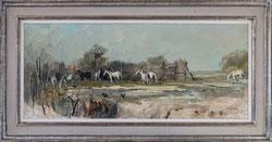 Nr.3405  L'Abri, Pferde Camargue