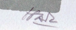 IBARZ  MIGUEL