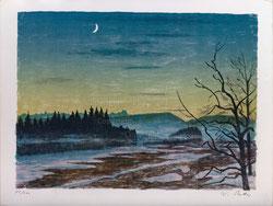 Winterlandschaft mit Mond
