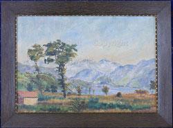 Nr. 2165 Ried- Landschaft mit See