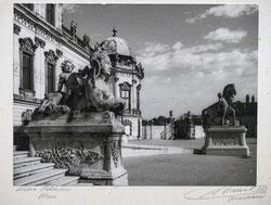 Nr. 3563 Schloss Belvedère, Wien
