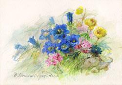 Nr.689 Alpenblumen