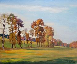 Nr.1781 Herbstwald