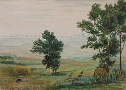 Nr.1015 Landschaft bei Tibirke, DK